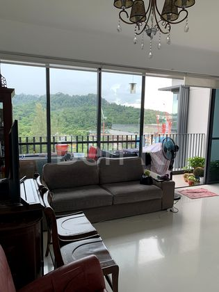Wide living room with treetops view at balcony