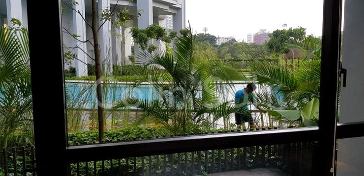 SWIMMING POOL WITH LOTS OF GREENERY.